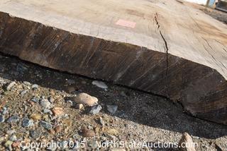 HUGE Slab of Oak Wood