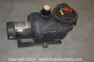 Hayward North Star Pump